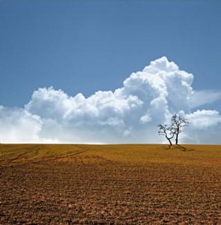 秋季美景圖片
