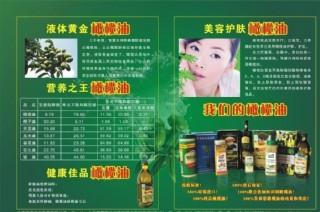 橄欖油宣傳單圖片