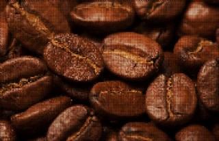 咖啡豆矢量圖片
